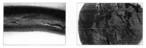 図5 ブリスター現象の例GT社資料